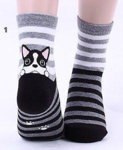 جوراب سگ مشکی